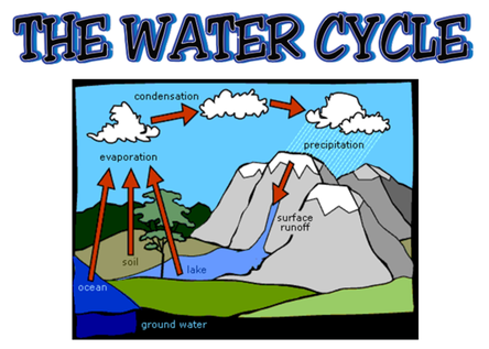 The Water Cycle - 4th Grade